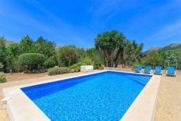 Бассейн. Испания, Польенса : Уютная вилла обставленная в традиционном стиле, с 2 спальнями, 1 ванной комнатой и собственным бассейном, барбекю, шезлонгами.