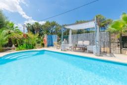 Бассейн. Испания, Алькудия : Очаровательный домик для отдыха 4-х человек