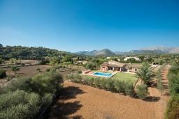 Зелёный сад. Испания, Польенса : Традиционная средиземноморская вилла с мезонином, частным садом, бассейном и открытой парковкой находится в Полленсе, в нескольких минутах езды от ее центра, 3 спальни, 2 ванные комнаты, Wi-Fi.