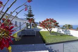 Патио. Испания, Пуэрто де ла Круз : Романтическая современная вилла с частным садом и открытым бассейном, 3 спальни, бесплатная парковка на территории, wi-fi