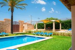 Бассейн. Испания, Эс-Лломбардс : Очаровательная вилла на испанском острове Майорка, вмещает до 8 человек с 4 спальнями, 4 ванными комнатами и собственным бассейном