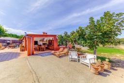 Терраса. Испания, Кан-Пикафорт : Яркая уютная вилла с 2 спальнями, 2 ванными комнатами и собственным бассейном, кондиционерами, Wi-Fi