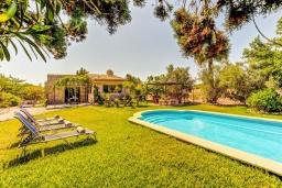 Бассейн. Испания, Порт-де-Польенса : Сказочна озелененная вилла для отдыха на испанском острове, 2 спальни, ванная комната, частный бассейн, кондиционеры и Wi-Fi