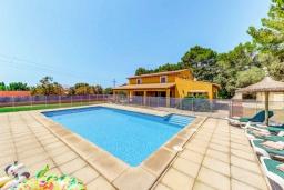 Бассейн. Испания, Алькудия : Яркая вилла в традиционном стиле с частным бассейном, террасой и садом, с 4 спальнями, 3 ванными комнатами