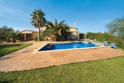 Бассейн. Испания, Алькудия : Уютная вилла со стильным интерьером и красивым видом, с 4 спальнями, 4 ванными комнатами и собственным бассейном.
