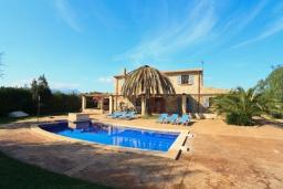 Бассейн. Испания, Алькудия : Традиционная испанская вилла с частным бассейном и красивым видом на закат,  с 3 спальнями, 2 ванными комнатами
