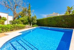 Бассейн. Испания, Алькудия : Красивая вилла с частным бассейном, террасой и садом, с 4 спальнями и 2 ванными комнатами.