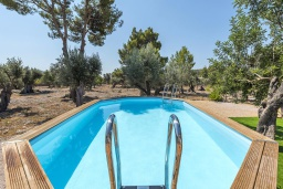 Бассейн. Испания, Буньола : Усадьба с частным бассейном, садом и огромным пространством для 8 гостей