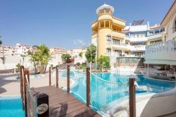 Территория. Испания, Лос Кристианос : Роскошная просторная квартира с великолепным видом на Атлантический океан и бассейном, 300 м до пляжа, 3 спальни, 1 ванная комната, wi-fi