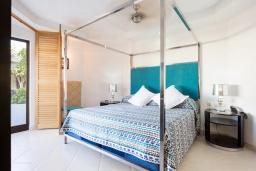 Испания, Лос Кристианос : Роскошная небольшая квартира с открытой террасой и прямым выходом в бассейн, 300 м до пляжа, 1 спальня, 1 ванная комната, wi-fi, бесплатная парковка