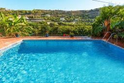 Бассейн. Испания, Фрихильяна : Атмосферная уютная вилла с видом на долину, с 2 спальнями, 2 ванными комнатами и собственным бассейном.
