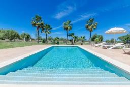 Бассейн. Испания, Санта-Маргалида : Вилла с бассейном и садом, расположенная в 6 км от пляжа Плайя-де-Муро