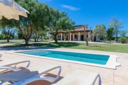 Зона отдыха у бассейна. Испания, Санта-Маргалида : Вилла с бассейном и садом, расположенная в 6 км от пляжа Плайя-де-Муро