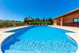 Бассейн. Испания, Алькудия : Традиционная испанская вилла расположенная в уединенном месте,  с 3 спальнями, 3 ванными комнатами и частным бассейном.