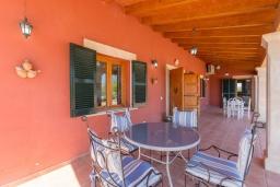 Терраса. Испания, Алькудия : Традиционная испанская вилла расположенная в уединенном месте,  с 3 спальнями, 3 ванными комнатами и частным бассейном.