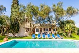 Бассейн. Испания, Алькудия : Загородная вилла для отдыха с красивым зеленым садом на всей территории, с 3 спальнями, 2 ванными комнатами и собственным бассейном.