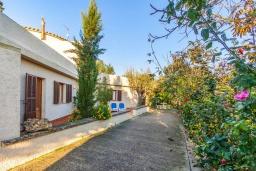 Патио. Испания, Алькудия : Загородная вилла для отдыха с красивым зеленым садом на всей территории, с 3 спальнями, 2 ванными комнатами и собственным бассейном.