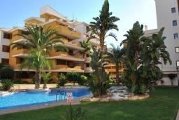 Территория. Испания, Торревьеха : Комфортные апартаменты с видом на сад, 2 спальни, гостиная, 2 ванные комнаты, Wi-Fi, кондиционер, паркинг, балкон, спутниковое телевидение, общий бассейн