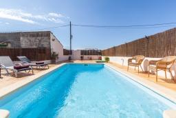 Бассейн. Испания, Алькудия : Пляжная вилла в средиземноморском стиле в районе Баркарес, всего в нескольких минутах езды на автомобиле от Алькудии, с собственным бассейном и садом, 3 спальни, 2 ванные комнаты, бесплатный Wi-Fi.