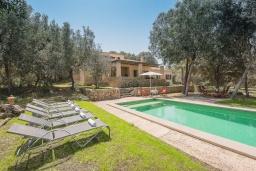 Зона отдыха у бассейна. Испания, Кала Миллор : Красивая вилла окружённая садом из оливковых деревьев, современный комфортабельный интерьер, все удобства.