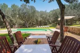 Обеденная зона. Испания, Кала Миллор : Красивая вилла окружённая садом из оливковых деревьев, современный комфортабельный интерьер, все удобства.