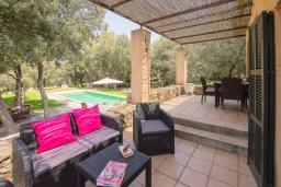 Терраса. Испания, Кала Миллор : Красивая вилла окружённая садом из оливковых деревьев, современный комфортабельный интерьер, все удобства.