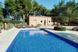 Бассейн. Испания, Кала-д'Ор : Небольшая уединенная вилла с роскошным садом и частным бассейном, с 3 спальнями и 2 ванными комнатами, кондиционер, бесплатный Wi-Fi.