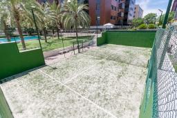 Зелёный сад. Испания, Гранада : Уютная современная квартира в Гранаде недалеко от научного парка и кафедрального собора с одной спальней, ванной комнатой и бассейном, Wi-Fi.