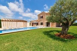 Зелёный сад. Испания, Кала-д'Ор : Роскошная уединенная вилла для комфортного спокойного отдыха вдали от городской суеты, с 5 спальнями, 4 ванными комнатами и собственным бассейном.