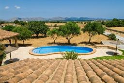 Бассейн. Испания, Алькудия : Большая просторная вилла со всеми удобствами, с 5 спальнями, 3 ванными комнатами и собственным бассейном.
