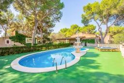Бассейн. Испания, Кала Санау : Одноэтажная вилла обставленная в традиционном стиле, с красивым садом, с 3 спальнями, 2 ванными комнатами и частным бассейном.