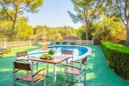 Зона отдыха у бассейна. Испания, Кала Санау : Одноэтажная вилла обставленная в традиционном стиле, с красивым садом, с 3 спальнями, 2 ванными комнатами и частным бассейном.