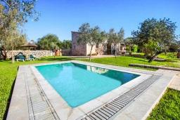 Бассейн. Испания, Эс-Лломбардс : Живописная одноэтажная вилла, с 1 спальней, 1 ванной комнатой и собственным бассейном.