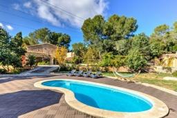 Бассейн. Испания, Кальвия : Живописная вила с красивым садом, интерьер обставлен в традиционном испанском стиле, вилла с 4 спальнями, 5 ванными комнатами и собственным бассейном.