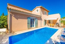 Бассейн. Испания, Алькудия : Свежая недавно построенная вилла, с современным интерьером, с 3 спальнями, 2 ванными комнатами и собственным бассейном.