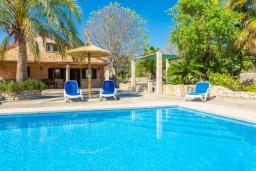 Бассейн. Испания, Алькудия : Красивая вилла с роскошным частным бассейном, с 3 спальнями и 3 ванными комнатами.