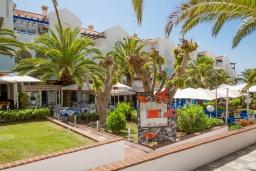 Территория. Испания, Нерха : Замечательная квартира с видом на море в 15 минутах ходьбы от города Нерха с общим и детским бассейном, балконом и садом, 1 спальня, 1 ванная комната, бесплатный Wi-Fi.