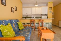 Гостиная / Столовая. Испания, Нерха : Превосходные апартаменты с кондиционером, бесплатным Wi-Fi и шикарным видом на зеленый сад недалеко от пляжей Эль-Плайясо и Плайя-де-Вильчеза, 1 спальня, 1 ванная комната, гостиная.