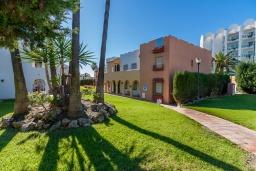 Зелёный сад. Испания, Нерха : Превосходные апартаменты с кондиционером, бесплатным Wi-Fi и шикарным видом на зеленый сад недалеко от пляжей Эль-Плайясо и Плайя-де-Вильчеза, 1 спальня, 1 ванная комната, гостиная.