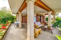 Терраса. Испания, Алькудия : Очаровательная озеленена вилла с современным интерьером, с 4 спальнями и 3 ванными комнатами.