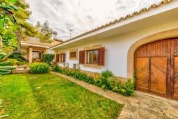 Зелёный сад. Испания, Алькудия : Очаровательная озеленена вилла с современным интерьером, с 4 спальнями и 3 ванными комнатами.