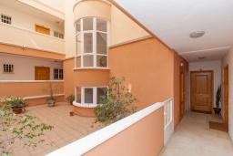 Вход. Испания, Нерха : Двухкомнатная квартира с видом на город в Нерхе, в 350 м от пляжей  Торресилья и Эль-Салон и менее чем в 1 км от смотровой площадки «Балкон Европы», 1 спальня, 1 ванная комната, Wi-Fi.