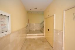 Вход. Испания, Нерха : Стильные апартаменты в центре города Нерха, в 200 метрах от песчаного пляжа Плайя-Торречилла, в 600 метрах от Балкон-де-Европа и в 1,4 км от пляжа Бурриана, парковка, бассейн, 1 спальня, 1 ванная комната.