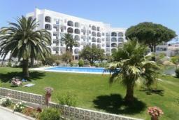 Зелёный сад. Испания, Нерха : Очаровательные апартаменты с бассейном, террасой и балконом в Нерхе, в 100 м от песчаного пляжа CARABEO, в 30 км от аквапарка AQUATROPIC ALMUNECAR, в 120 км. от горнолыжного курорта Сьерра-Невада, 3 спальни, 2 ванные, открытая парковка, бесплатный Wi-Fi.