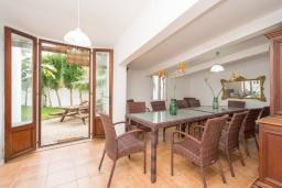 Терраса. Испания, Порт-де-Польенса : Уютная вилла в шаговой доступности от песчаного пляжа, бассейн, гостиная, 4 спальни, 2 ванных комнаты, Wi-Fi, кондиционер