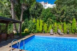 Бассейн. Испания, Бланес : Красивая вилла с 3 спальнями из которых открывается потрясающий вид на Средиземное море и сосновый лес, с 3 ванными комнатами и частным бассейном, оборудована кондиционерами, спутниковым телевидением и лифтом.