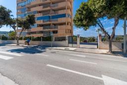 Вид на виллу/дом снаружи. Испания, Фуэнхирола : Сказочные апартаменты с бассейном, зеленым садом, теннисным кортом и парковкой в районе Мирамар Фуэнхирола, в нескольких минутах от пляжа Сохаил Фуэнхирола, 1 спальня, 1 ванная комната, Wi-Fi.