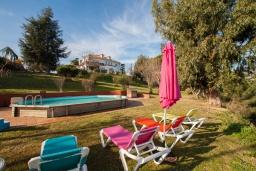Бассейн. Испания, Калелья : Традиционный испанский дом,  расположенный в тихом жилом районе, подходит для большой семьи или группы друзей семьями, 7 спален, 3 ванные комнаты, частный бассейн и большой красивый сад.