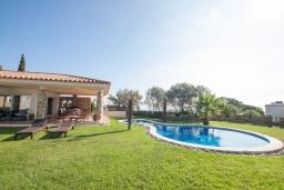 Бассейн. Испания, Ллорет-де-Мар : Очаровательная вилла расположенная в 4 км от центра Льорет де Мар, имеет 4 спальни, 2 ванные комнаты, частный бассейн и парковку.