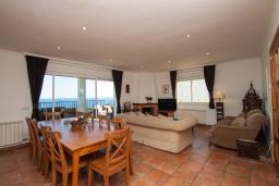 Гостиная / Столовая. Испания, Бланес : Прекрасная большая вилла расположенная всего в 400 метрах от пляжа Кала Санта-Кристина, имеет 6 спален, 4 ванные комнаты и частный бассейн, оборудована кондиционерами, спутниковым телевидением и Wi-Fi